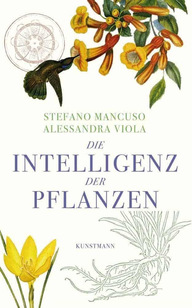 Die Intelligenz der Pflanzen ttii2q - Die Intelligenz der Pflanzen